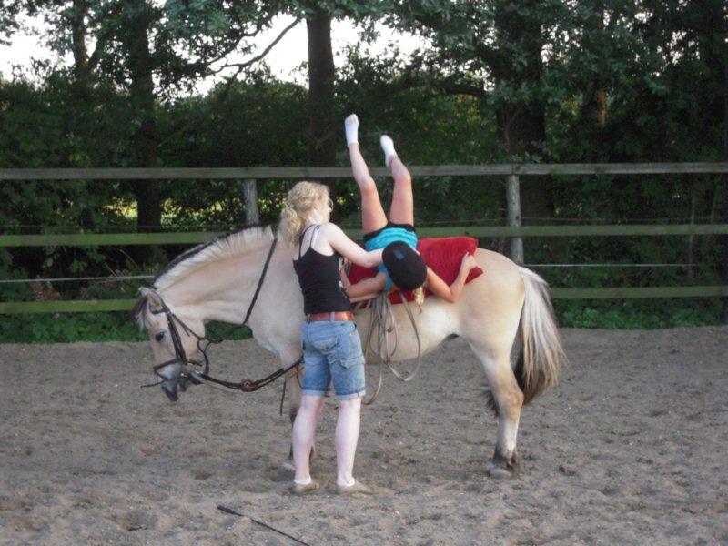 ponykamp in Holten
